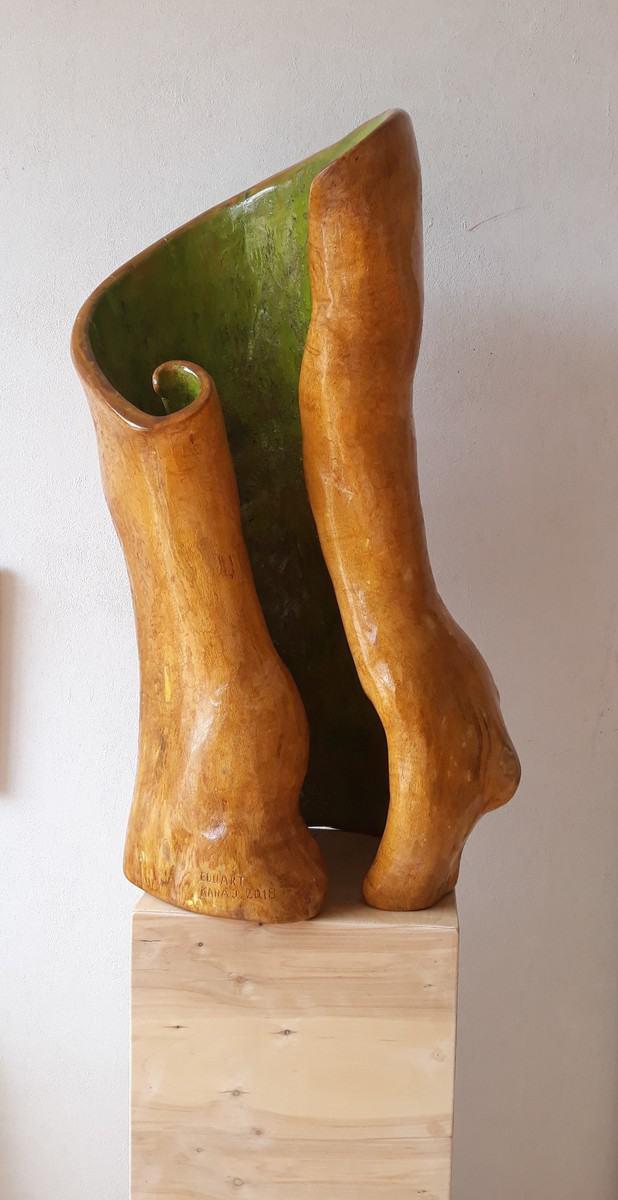 Arti i natyrës (zambaku), Eduart Karaj