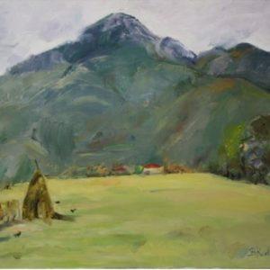 Peisazh fshati i Burrelit, Bujana Kurti